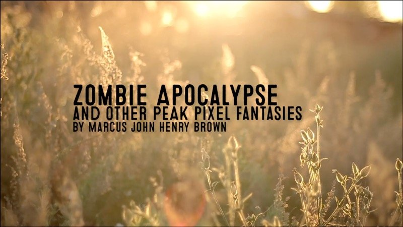 Zombie Apocalypse and other peak pixel fantasies.